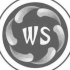 WS-集团